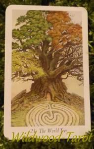 4_world-tree